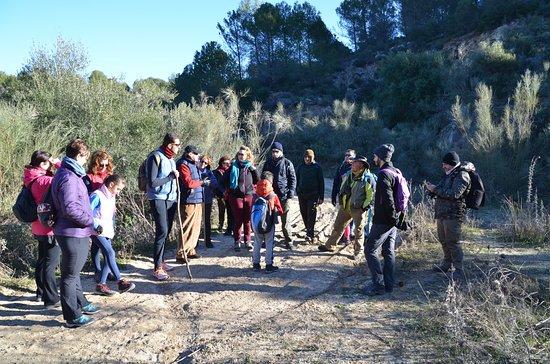 Morón de la Frontera, España: Explicando detalles del entorno