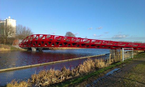 Delft Symbio Bridge