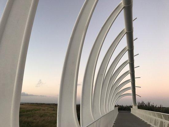 Нью-Плимут, Новая Зеландия: photo0.jpg