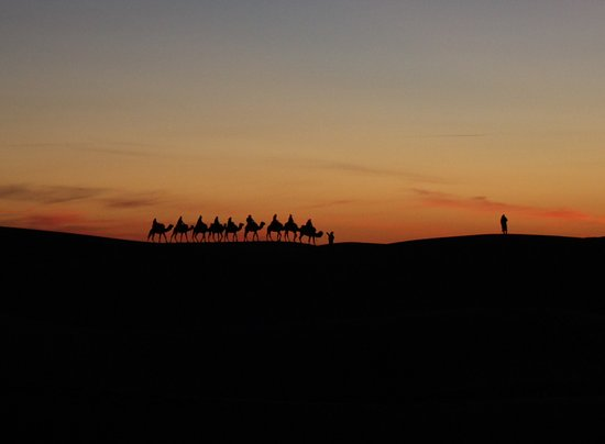 Best Of Merzouga - Day Tour: Another group on their camels coming into the camp