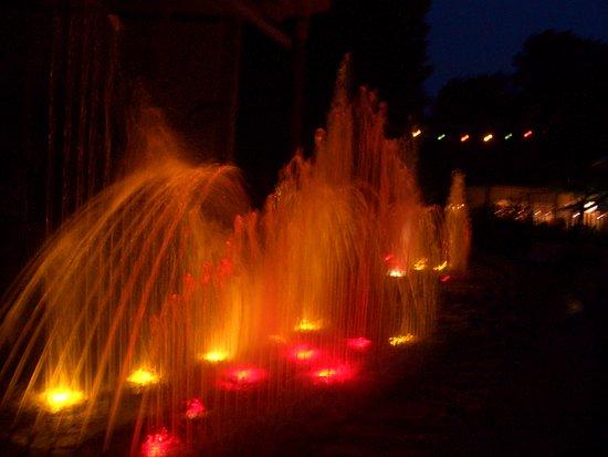 Bad Mergentheim, Alemania: Wasserspiele am Abend im Kurpark