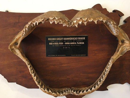 Anna Maria Island Historical Museum : photo6.jpg