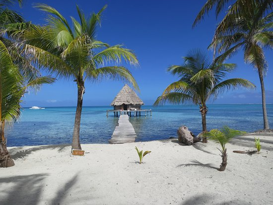 Glovers Reef Atoll, Belize: Cabin #6