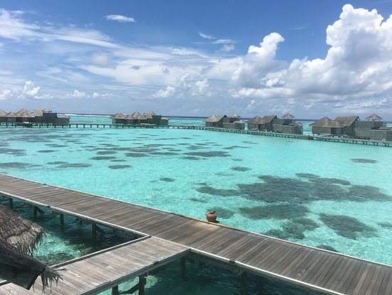 Gili Lankanfushi Maldives: View from our upper terrace