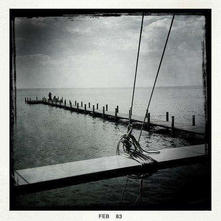 Sailing Club: photo0.jpg