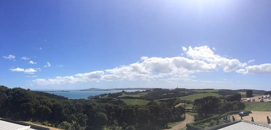 Auckland Fine Wine & Food Tours: View from Mudbrick Vineyard!