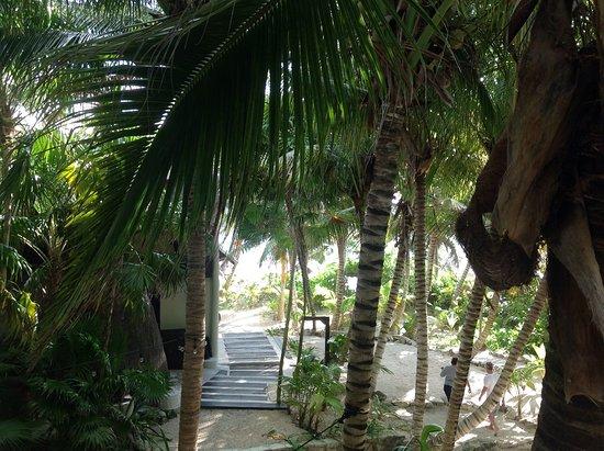 Casa de las Olas: View from our balcony