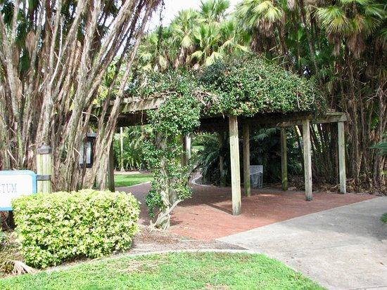 Gizella Kopsick Arboretum: Nice canopy