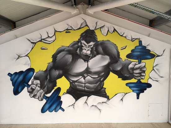 Tain, UK: Silverback Gym & Fitness