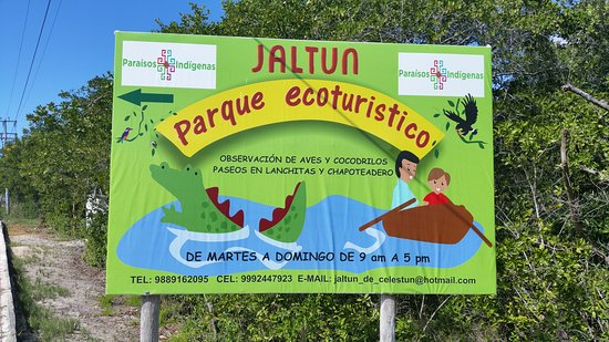 Celestun, Mexico: Jaltun Parque Recreativo