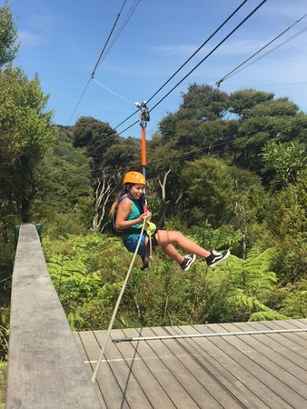Onetangi, New Zealand: Coming in from the second zip.