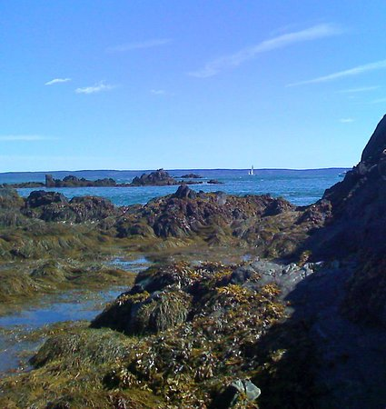 Lubec, Мэн: East Coast at Quoddy Head State Park, Maine