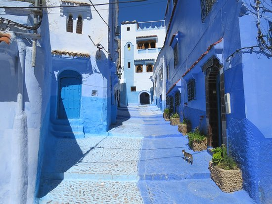 Morocco Discovery Holidays: The blue washed walled city of Chefchaouen