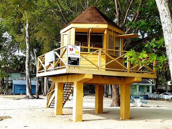 Holetown, Barbados: A boardwalk, monkeys, and a snorkeling spot,