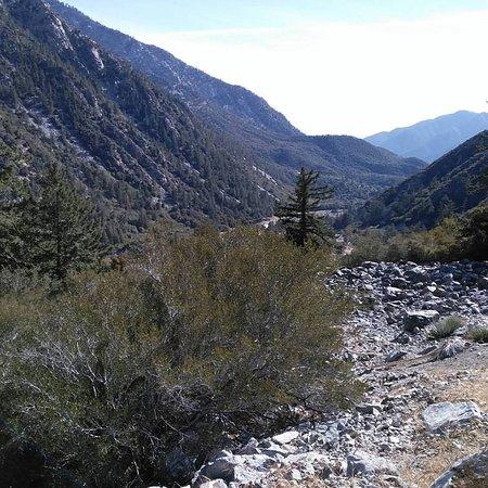 Mount Baldy, CA: Вид на долину