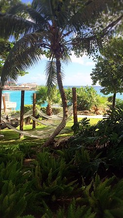 sonesta ocean point resort  grab a drink and lay in the hammock  grab a drink and lay in the hammock   you know you want to      rh   tripadvisor