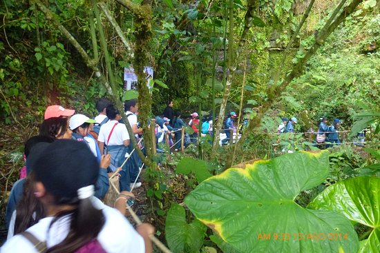 Granja La Cascada Para Colegios