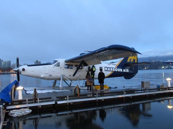 Harbour Air Seaplane - Picture of Harbour Air Seaplanes, Vancouver ...