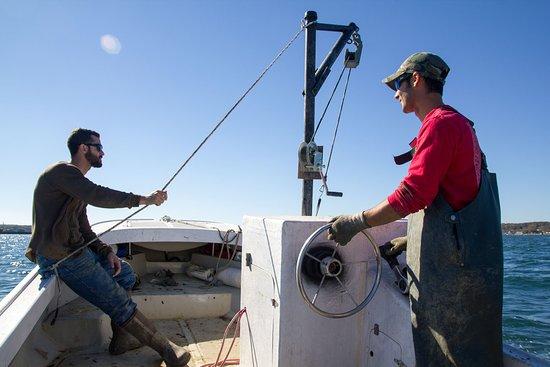Oak Bluffs, MA: Farmers on the work boat