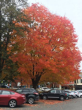 Camden, ME: photo1.jpg