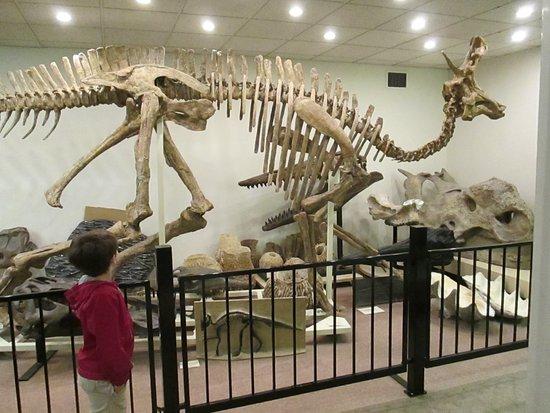 Сарния, Канада: One of many exhibits