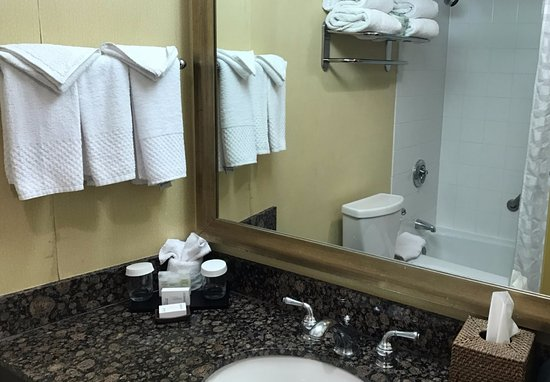 Embassy Suites by Hilton Minneapolis - Airport: Bathroom