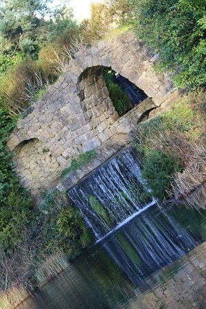 Buckingham, UK: Nice little waterfall