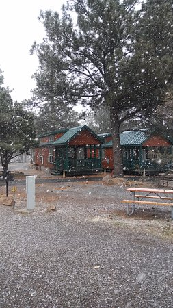Flagstaff Grand Canyon KOA: The 2 cabins