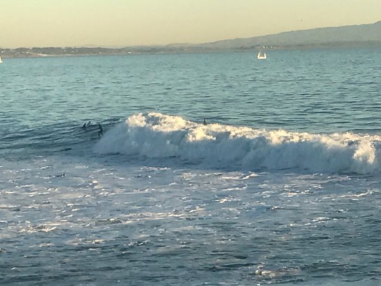 Santa Cruz Beach Boardwalk: photo9.jpg
