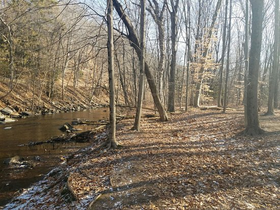 Glastonbury, CT: Cotton Hollow Preserve