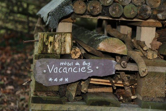 Oundle, UK: Another bug hotel