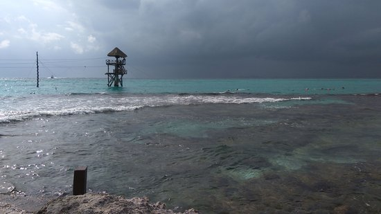 Garrafon Natural Reef Park: IMG-20161231-WA0000_large.jpg