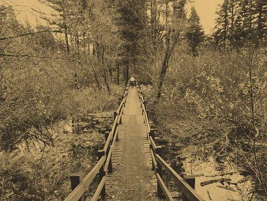 สตีเวนสัน, วอชิงตัน: Trail hike