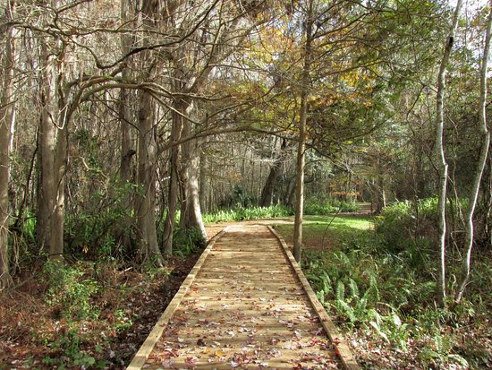 Sebring, FL: One of the short trails