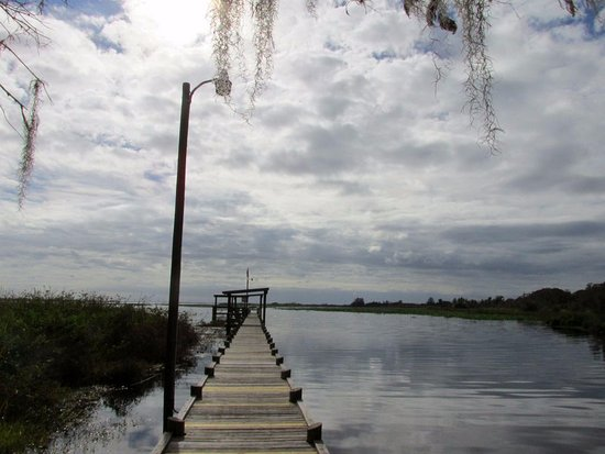 Sebring, FL: A nice dock that goes out to a pleasant view of Lake Istokpoga with plenty of seasting.