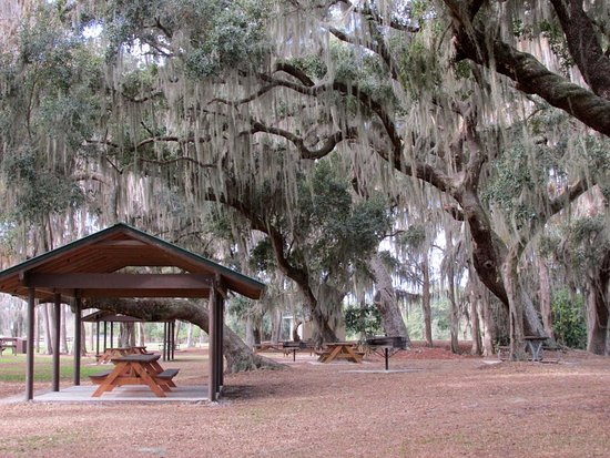 Sebring, FL: Spanish moss adorns the picnic/camping area.