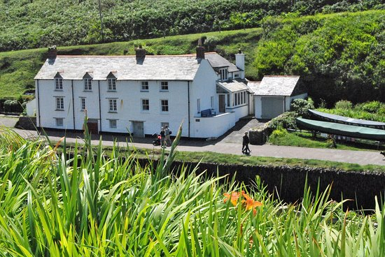 Boscastle, UK: Lots of houses, shops, and restaurants