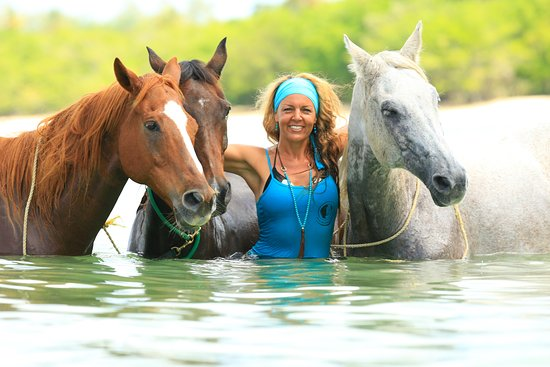 Buccoo, Tobago: Being with Horses