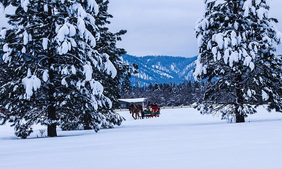Leavenworth, WA: View of the other sleigh in motion