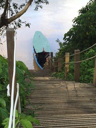 Refugio Amazonas: Stairs to the boat.