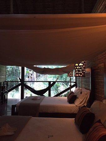 Refugio Amazonas Picture