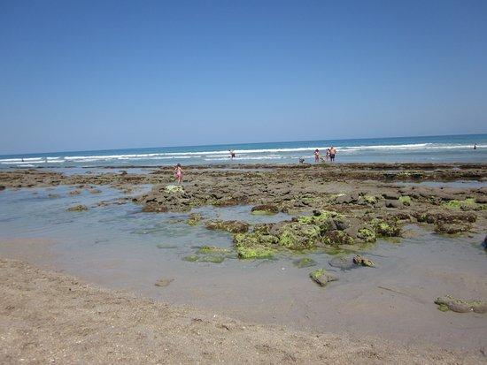 Port Saint Lucie, Floryda: waltons rock beach