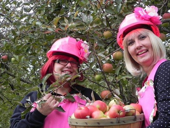 Brookwood Fruit Farm