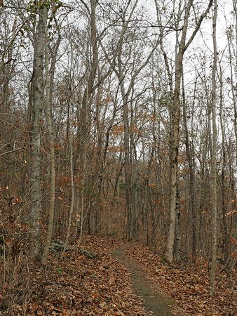 Russell Cave National Monument: Nature trail