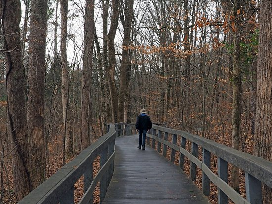 Russell Cave National Monument: Trail to the cave