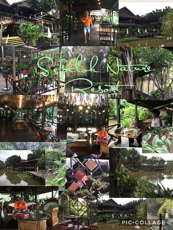 Sepilok, Malezja: photo0.jpg