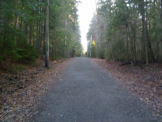 Phippsburg, ME : the trail up the hill