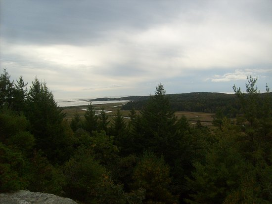 Bates-Morse Mountain Conservation Area: view from the top