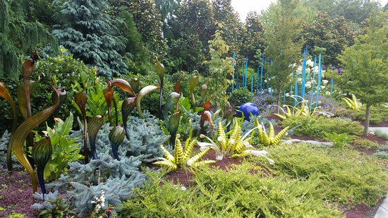 Mixed color garden Picture of Chihuly Garden and Glass Seattle
