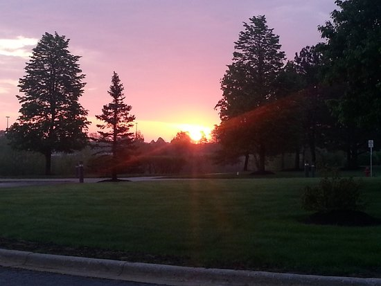 Zdjęcie Spring Grove